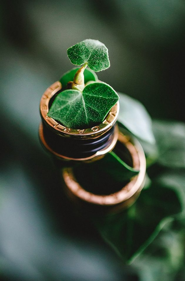 Engagement-ring-with-green-leaves