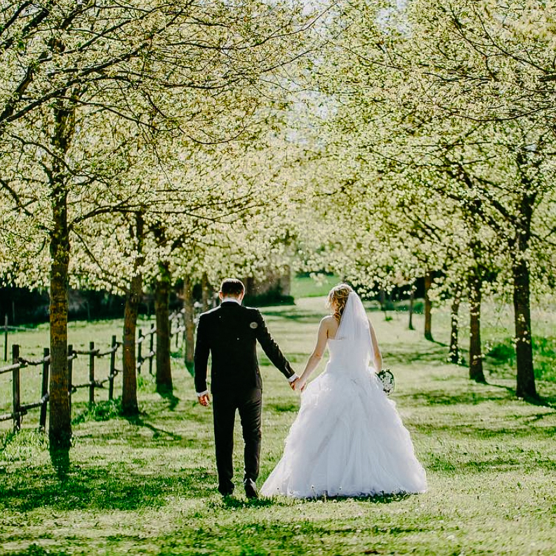 bride-and-groom-walking-between trees-still frame from a wedding video